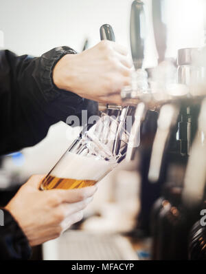 Bartender man poors glass of beer. - Stock Photo