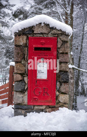 A red British Royal Mail post office post box after a snow storm in the Glenmore forest near Aviemore in the Cairngorms national park in Scotland - Stock Photo