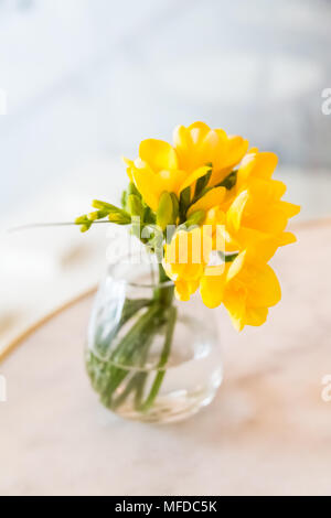 Barcelona/Spain - March 20, 2015: A bunch of yellow buttercups sit in a glass on a counter.  In a coffee shop in Barcelona, Spain. - Stock Photo