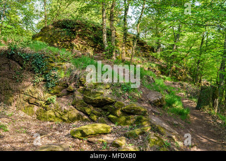The Palatinate Forest in spring. Germany - Stock Photo