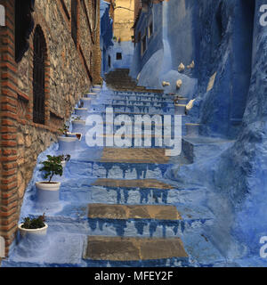 Stone staircase in the medina of Chefchaouen among the blue walls, Morocco. - Stock Photo