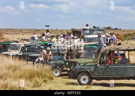 Tourists watching the wildebeest migration crossing the Mara river. Up to 8000 tourists a day can be in the Masai Mara during the migration months of - Stock Photo