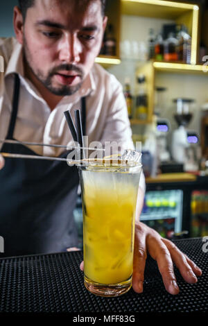 Bartender decorating a glass filled with orange drink using a slice of ginger - Stock Photo