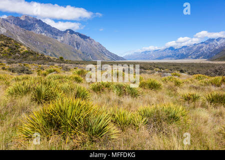 mount cook national park view from path to the tasman glacier new zealand south island new zealandnew zealand south island new zealand - Stock Photo