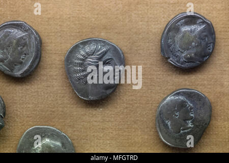 Ancient Greek silver coins (didrachm) from the treasure of 22 didrachmae found in Frasso Telesino dated from the first decades of the 4th century BC on display in the National Archaeological Museum (Museo Archeologico Nazionale di Napoli) in Naples, Campania, Italy. - Stock Photo
