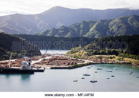 Logging operations in Marlborough Sounds near Picton, South Island, New Zealand. - Stock Photo