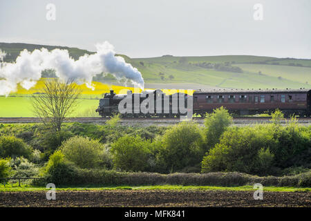 Dorchester, Dorset, UK.  26th April 2018.  The Great Britain XI excursion train hauled by steam locomotives 31806, pictured at the rear of the train, and 45212 at the front of the train, not pictured, passes the iron age hill fort of Maiden Castle as it approaches Dorchester on the Dorset leg of the 9 day round Britain trip.  Picture Credit: Graham Hunt/Alamy Live News - Stock Photo