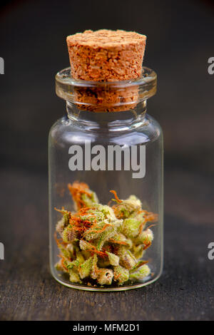 Macro detail of small jar with cannabis (sour tangie strain) isolated on black background - Medical marijuana dispensary concept - Stock Photo