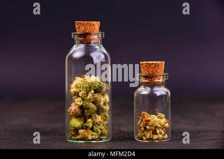 Detail of assorted jars with cannabis calyxes (sour tangie strain) isolated on black background - Medical marijuana dispensary concept - Stock Photo