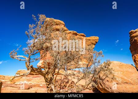 Balanced Rock at the Garden of the Gods in Colorado Springs, Colorado, USA - Stock Photo