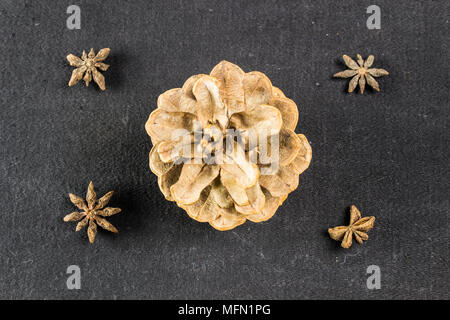 Pine cone on dark black background christmas decoration - Stock Photo