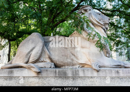 One of the lions at entrance of NYPL - Stock Photo