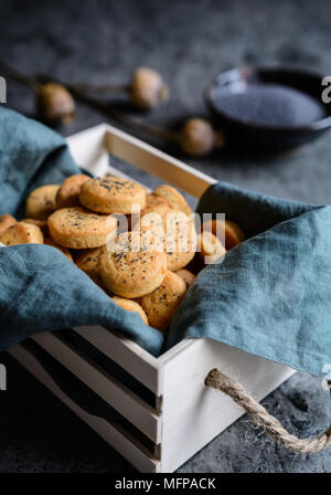 Baked savory Cheddar cheese crackers sprinkled with poppy seeds - Stock Photo