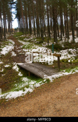Small bridge and path uphill to Meikle Balloch Hill between dense conifers and with snow patches in autumn. - Stock Photo