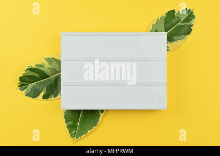 Summer mock up empty template with white mood board and natural leaves of ficus on yellow background, copy space for text, flat lay top view - Stock Photo