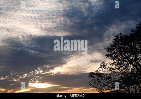 Dramatic mackerel sky in Bedfordshire, England. - Stock Photo