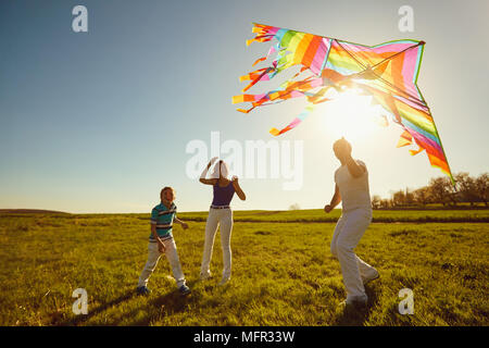 Happy family playing with a kite on nature in spring, summer. - Stock Photo