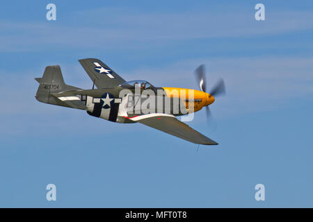 North American P51D Mustang, 'Ferocious Frankie' taking part in a display at Fort George, Scotland. This aircraft has appeared in 'Memphis Belle'. - Stock Photo