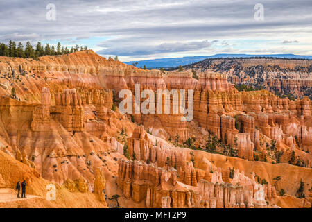 Bryce Canyon National Park, Utah, USA. - Stock Photo