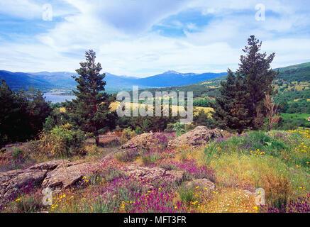 Landscape from Navafria mountain pass. Lozoya valley, Sierra de Guadarrama National Park, Madrid province, Spain. - Stock Photo