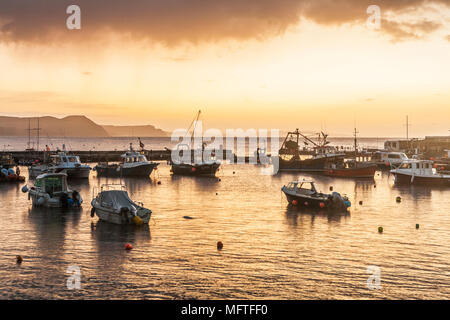 Sunrise over the harbour at Lyme Regis in Dorset, UK. - Stock Photo