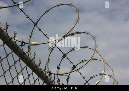 Razor sharp barbed wire coiled on top of a chain link fence. - Stock Photo