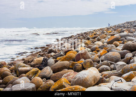 Yellow moss covered rounded rocks on a rugged wind swept African coastline - Stock Photo