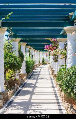 Pergola. Sources Kallithea (Terme Kalithea). Rhodes Island. Greece - Stock Photo