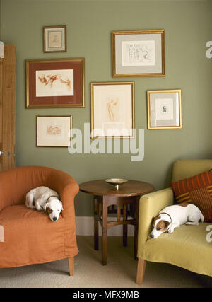 Sitting room detail with framed artwork wooden side table and two dogs sleeping on slip-covered armchairs. - Stock Photo