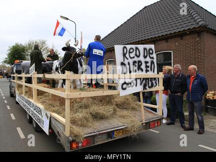 Tienhoven, Netherlands. 27th Apr, 2018. Kingsday Netherlands Tienhoven 27-04-2018 procession oostervaarderplassen political issue Credit: Catchlight Visual Services/Alamy Live News - Stock Photo