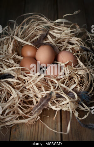 Chicken eggs in the straw nest with feathers on wooden boards, closeup. Selective focus. Low key. - Stock Photo