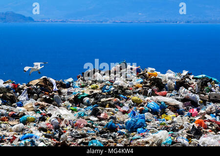 Waste disposal site with seagulls scavenging for food - Stock Photo