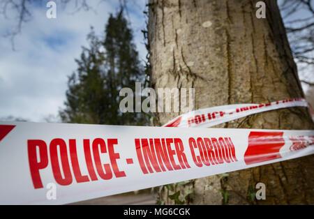 Police Inner Cordon tape wrapped around a tree - Stock Photo