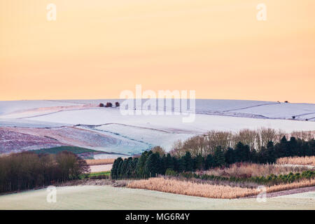 A frosty morning on the Marlborough Downs in Wiltshire. - Stock Photo