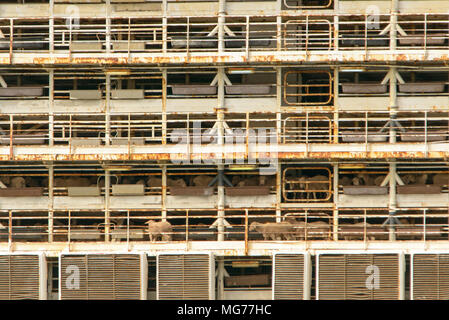 Port Adelaide, Australia 28th April 2018. The controversial Livestock Carrier Bader III leaves Adelaide for Fremantle loaded with sheep and cattle after rowdy animal welfare protests over cruelty claims. Sheep can be seen free on the decks. Ray Warren/Alamy Live News - Stock Photo