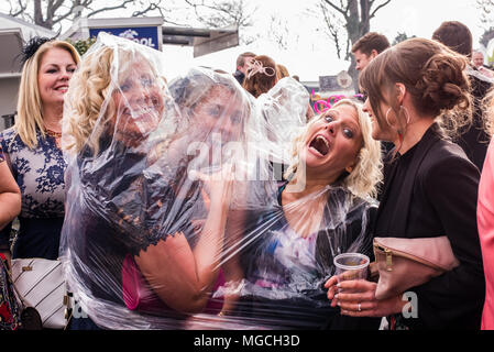 Group of female friends shelter from rain, under a waterproof transparent poncho at the Grand National, Aintree, Liverpool, England, 9th April, 2016 - Stock Photo