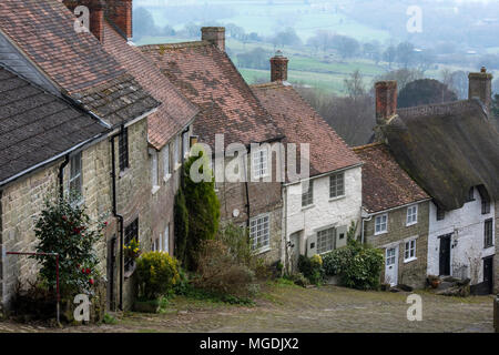 The beautiful dorset countryside and typically English thatch cottages at gold hill in Shaftesbury. Scenery and English countryside houses and cobbled - Stock Photo