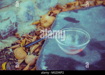 Meal in the garden - Close up on black plastic fork and a small empty glass bowl that are placed on a black stone in the garden. Many orange leaves al - Stock Photo