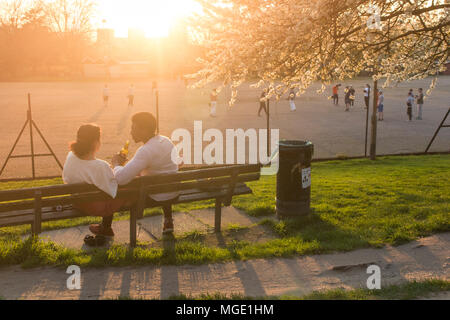 An interracial couple share a drink and enjoy each others company under a cherry tree covered in blossom in a London park as the sun goes down - Stock Photo