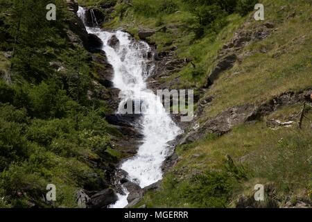 A simple stream with mountain water flows through the frame amid meadows and green trees and rocks, in Val Susa, near Turin in Piedmont in Italy - Stock Photo