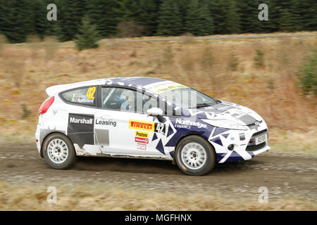 Kielder Forest, Northumberland, UK, 28 April 2018. Rally drivers compete in the Pirelli International Rally and second round of the Prestone British Rally Championship. (Special Stage 1 - Pundershaw 1). Andrew Cheal/Alamy Live News - Stock Photo