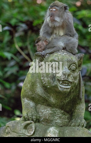 Mother and baby monkey perched atop statue, Sacred Monkey Forest Sanctuary, Ubud, Bali, Indonesia - Stock Photo
