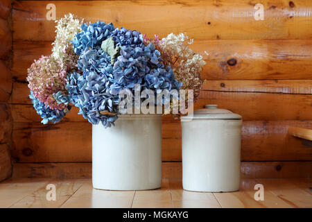 Two white pots of blue and white flowers deposit on a wood floor in a log cabin. - Stock Photo