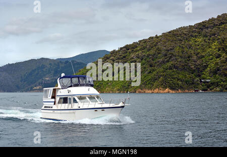 Luxury motor launch cruising in Queen Charlotte Sound, Marlborough, New Zealand - Stock Photo
