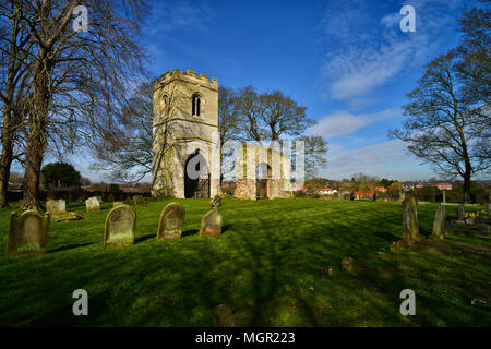 Remains of St Helen's Church, South Wheatley - Stock Photo