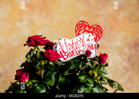 Red roses flowers with red heart on wooden background.birthday card with beautiful red rose.red flowers and message Happy birthday, - Stock Photo