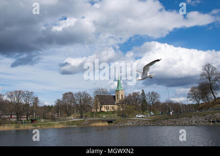 Seagull in Stockholm, with Gustavsbergskyrka in the background. Taken with Nikon D5300 - Stock Photo