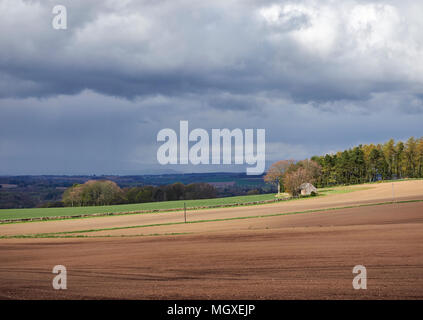 Dark clouds heralding Spring showers coming in this view of the Strathmore Valley and derelict Cottage looking north east towards Montrose, Angus, Sco - Stock Photo