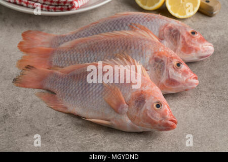 Fresh raw red tilapia fishes in the kitchen - Stock Photo