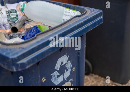 Close-up image on an opened blue plastic recycle bin used for household recyclable materials. - Stock Photo